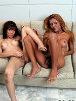 Hot transsexuals GF with nice titys